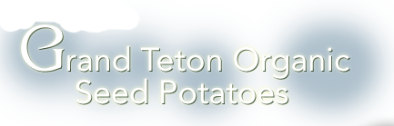 Grand Teton Organic Seed Potatoes